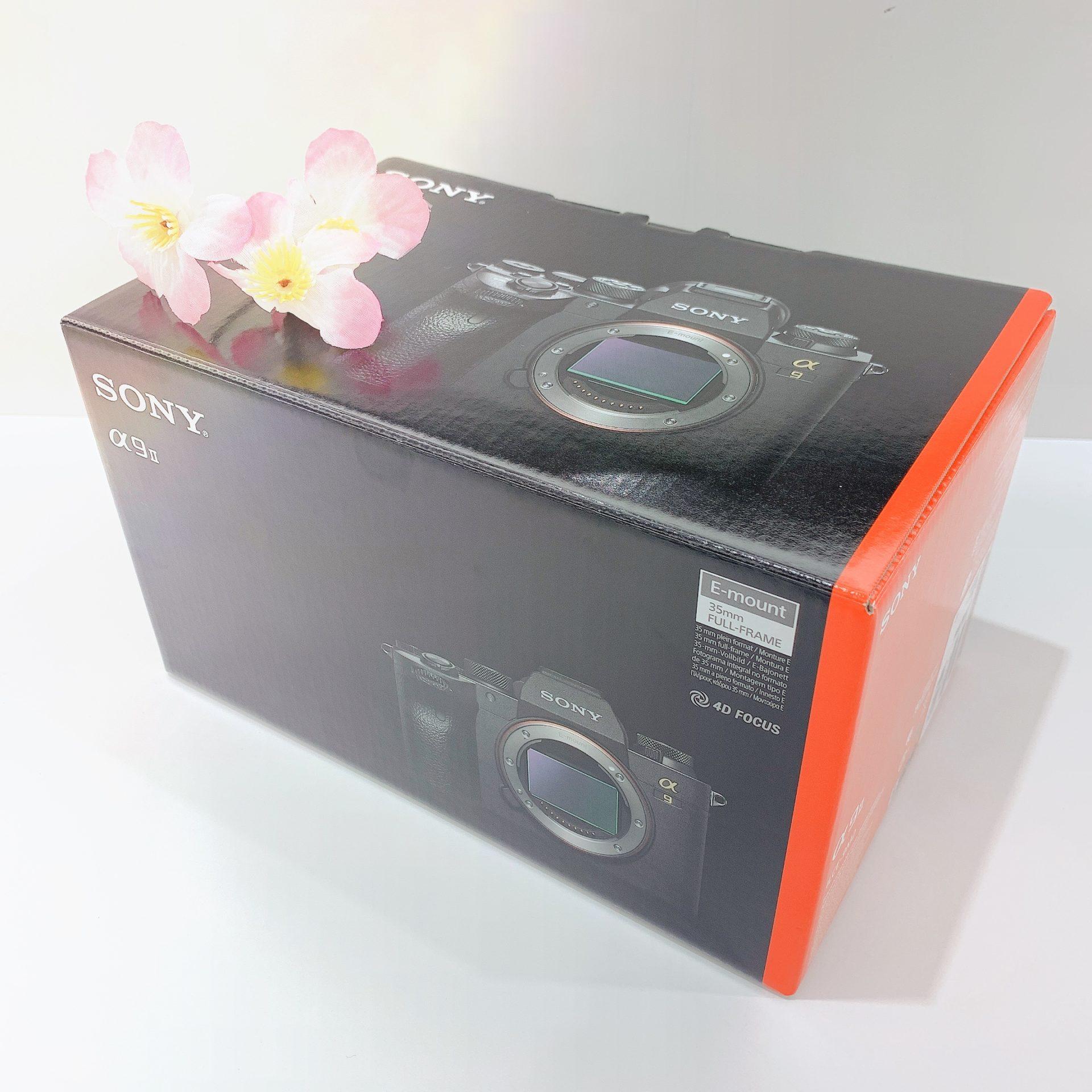 【カメラ 販売 盛岡】この春、カメラを始めてみませんか?